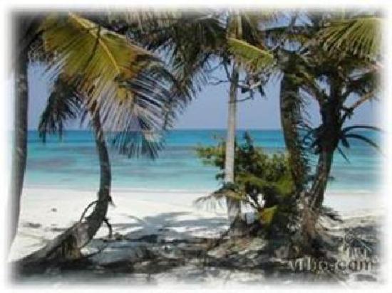 Breezy Hill Exuma Bahamas : Breezy Hill Beach!