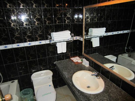 Sakya Hotel : Elegant Bathroom