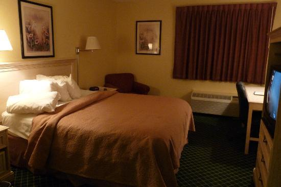 Quality Inn & Suites Detroit Metro Airport: Typical Room