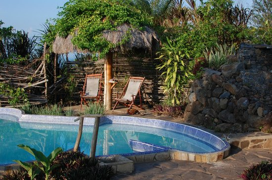 Totoco Eco-Lodge : Golden Sun by the pool