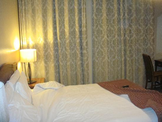 德魯裡宮廷酒店照片