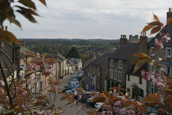 Willance House Guest House: Frenchgate - Willance House is the white building at the bottom