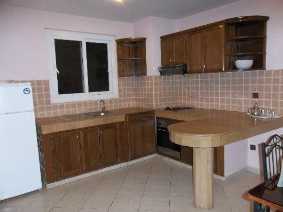 Flathotel Residence : kitchen