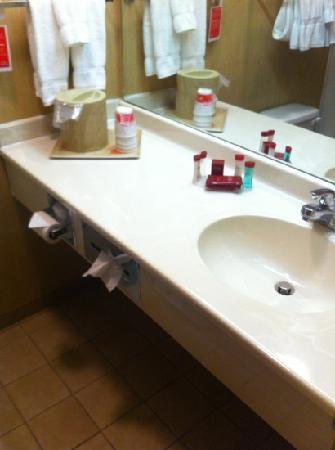 Ramada Limited Catlettsburg/Ashland: room 109 bath