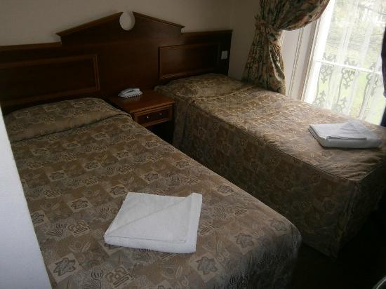 Pembridge Palace Hotel: chambre 2 lits simples