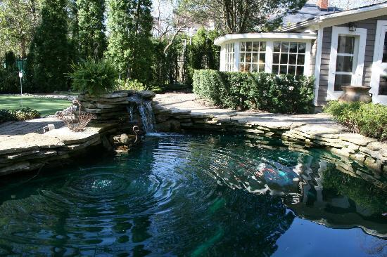 Historic Davy House B&B Inn: Relaxing backyard...