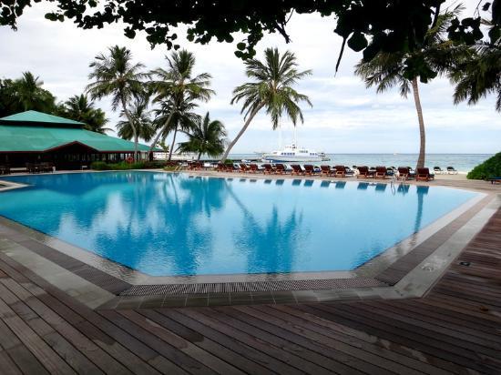 Meeru Island Resort & Spa : Pool