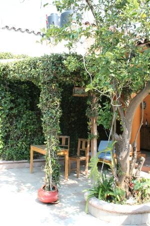 Hostel Las Palomas: part of the courtyard