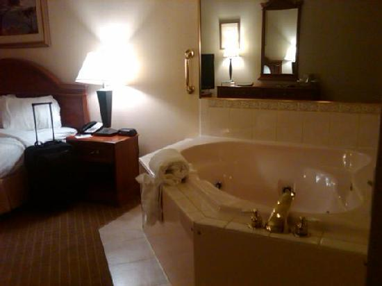 The Plaza Hotel & Suites: The room 2