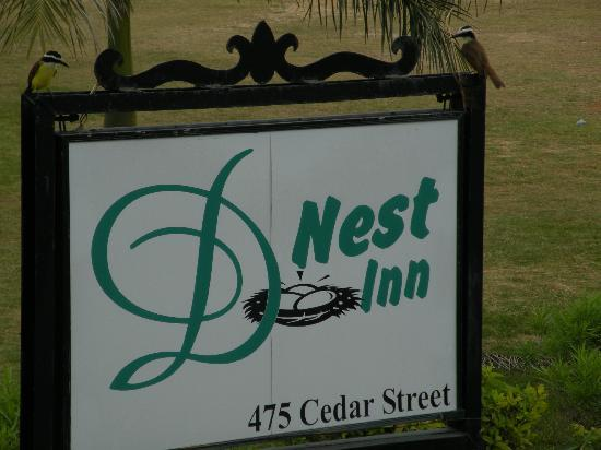 D'Nest Inn: Kiskadee birds on the sign