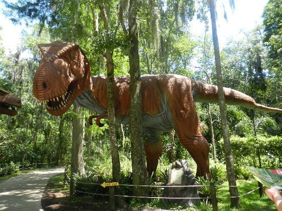Plant City, FL: T-Rex