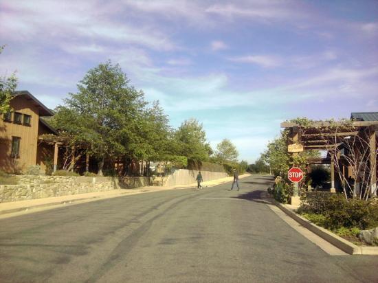 Ocean Mesa Campground at El Capitan: Entrance road and check-in at camp store (right)