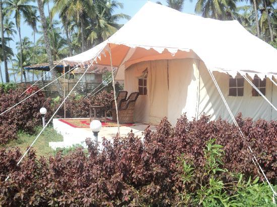 Five Five Restaurant and Guest Tents: luxury tents at Five Five Restaurant