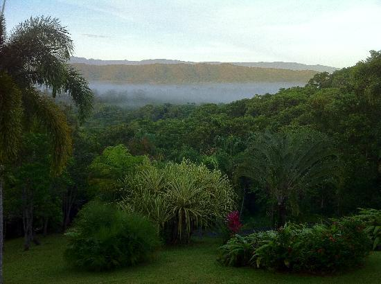 Daintree Manor B&B : Misty morning view from the balcony