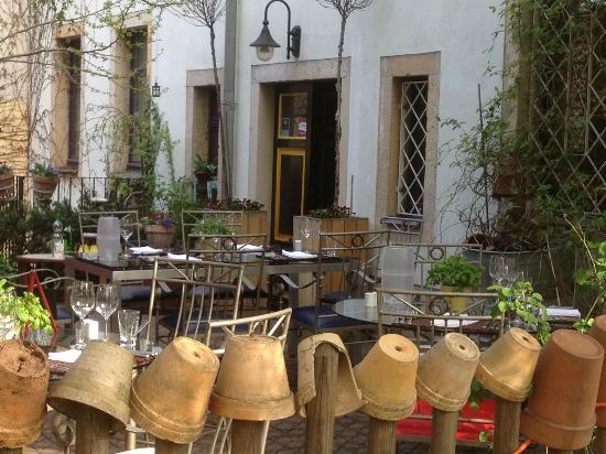 der somemrgarten picture of petit frank ihr franzosisches restaurant in dresden pieschen. Black Bedroom Furniture Sets. Home Design Ideas