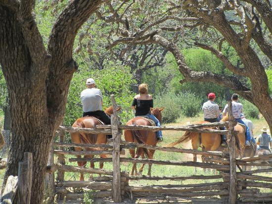 Dixie Dude Ranch : Off for a trail ride.