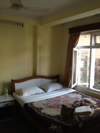 Dolphin Guest House: nice, bright room