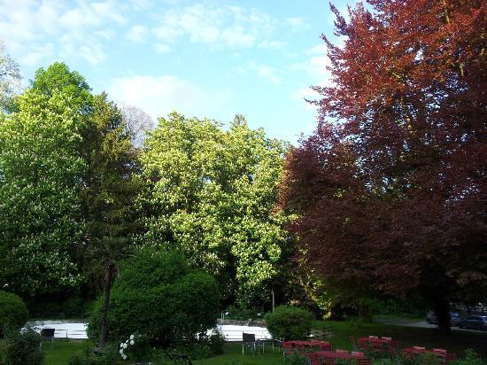 Hotel Schloss Heinsheim: Aussenanlage