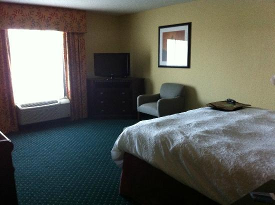 Hampton Inn Garden City : King Room