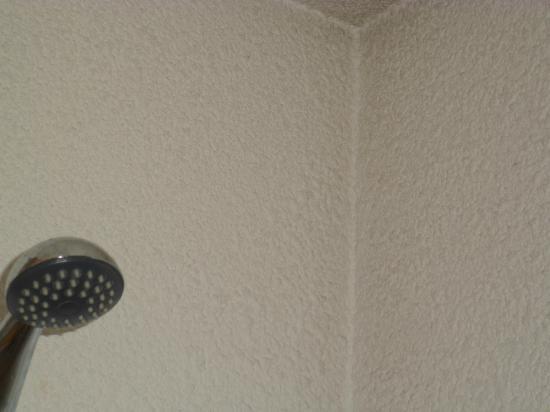 Arnaud Bernard Hotel: mold in the shower
