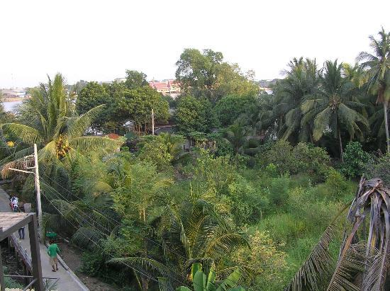 Bangkok Tree House: View over the jungle from rooftop relax area