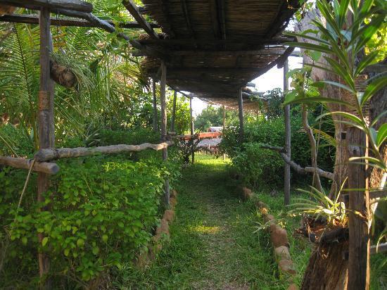 LaGoa Eco Lodge: pretty communal walkways and gardens