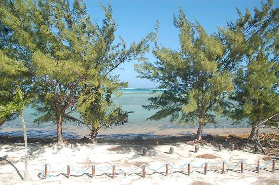Xcalak Caribe: PLAYA DEL RESTAURANT