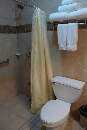 Radisson Fort George Hotel and Marina: The Bathroom with walk in shower