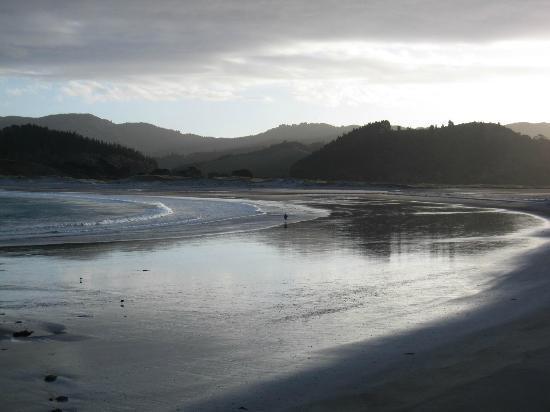 DOC Waikawau Bay Campsite : Strand in der Abendsonne