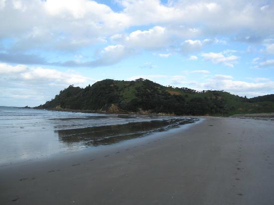 DOC Waikawau Bay Campsite : Strand