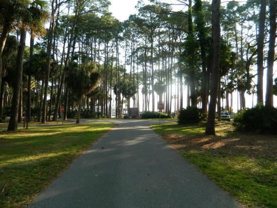 Hunting Island State Park Campground: Road inside campground