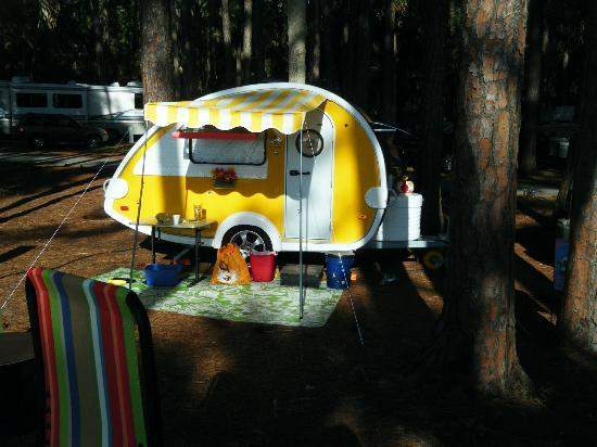 Hunting Island State Park Campground : My T@B, Daisy
