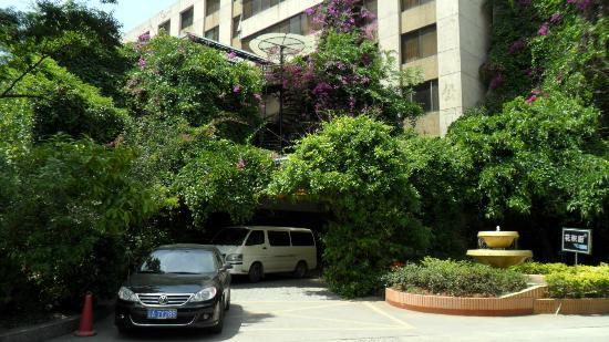Camellia Hotel : Hotel Entrance