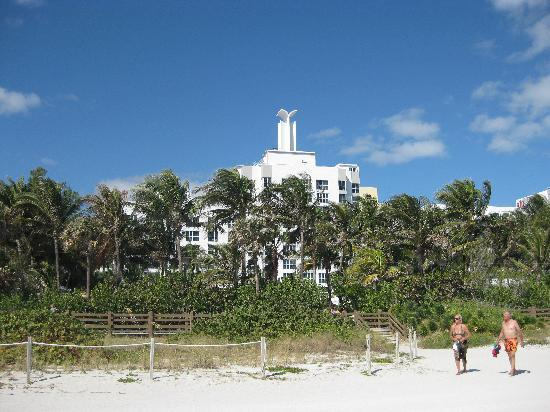 The Palms Hotel & Spa: View of hotel from beach