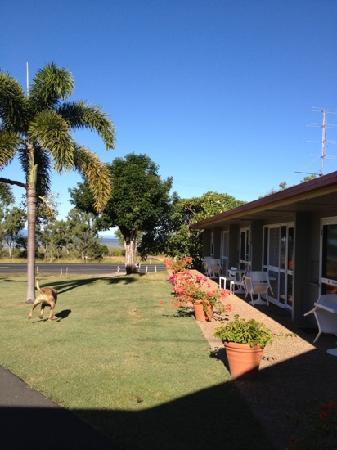 Ocean View Motel: great location.