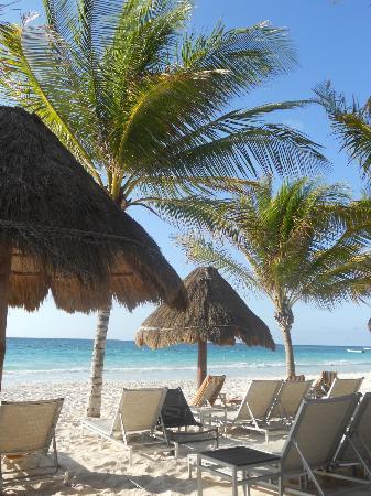 Catalonia Royal Tulum: spiaggia di sabbia bianchissima con palme e ombrelloni
