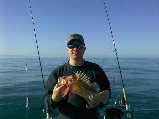 Yaquina bay bridge downtown newport oregon picture for Newport oregon fishing charters