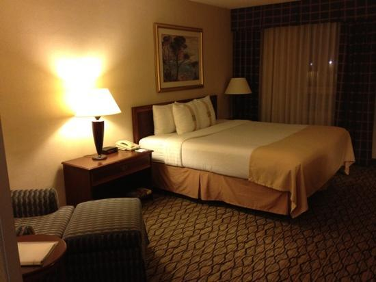 Holiday Inn Chicago Elk Grove: king room