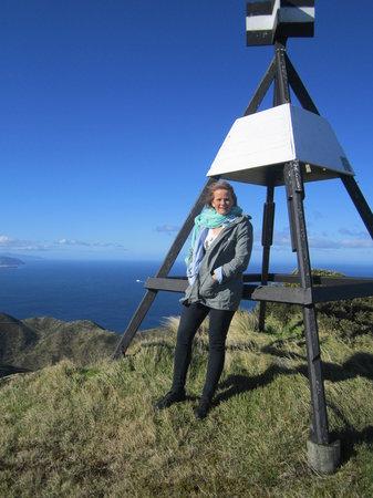 Kiwi Coastal Tours : The top of the tour