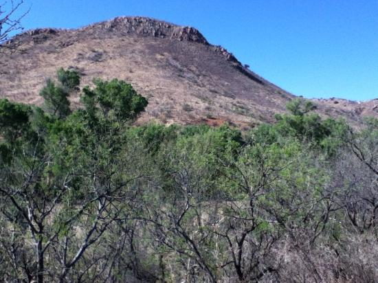 Circle Z Ranch: Lots of birding and hiking areas