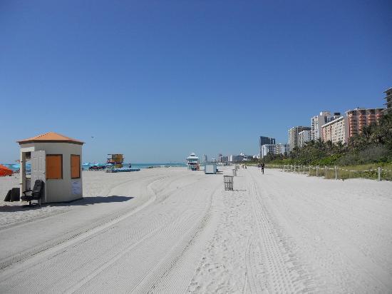 Hotel Riu Plaza Miami Beach: Miami beach at back of hotel