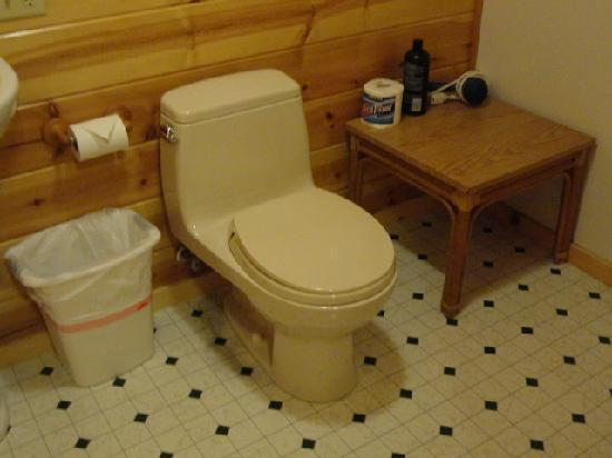 Holo Holo Inn: Clean toilet with rail for clothes