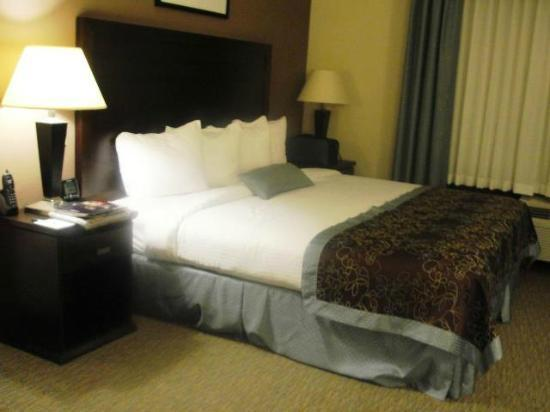 Wingate by Wyndham Fredericksburg : room with a comfy, clean king-size bed!