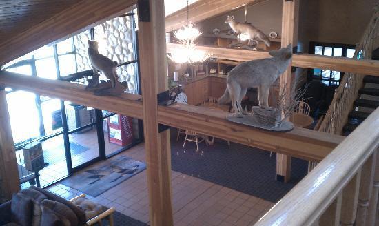 AmericInn Lodge & Suites Medora: Lobby/common area
