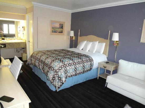 Napa Valley Hotel & Suites, a 3 Palms Boutique Hotel and Resort: Picture of the room.  Clean and modern!