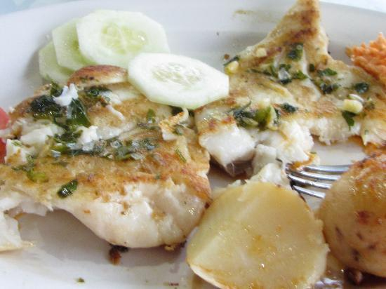 Xcalak Caribe: Snapper Fillets