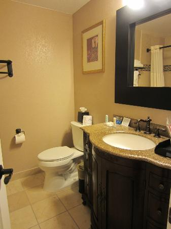 Comfort Inn Carmel By The Sea: Clean bathroom