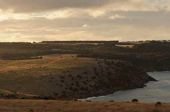 写真Cape Willoughby Lighthouse Keepers Heritage Accommodation枚