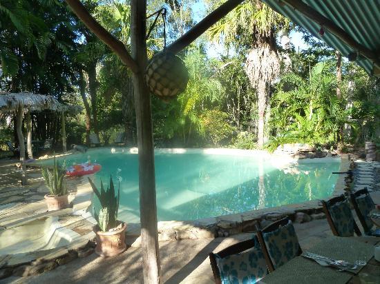 Bush Bunks: Nice swimming pool !