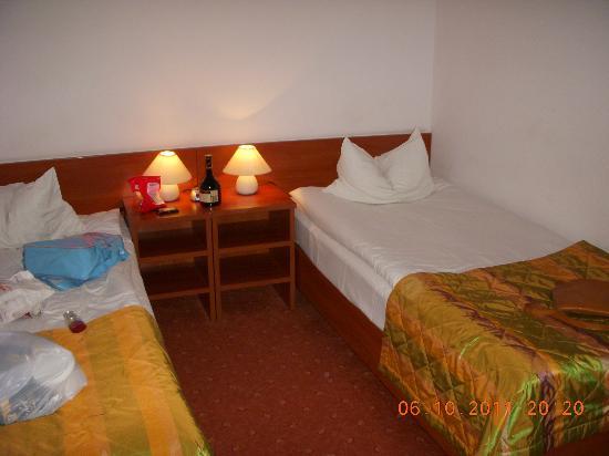 Gorski Hotel: The room
